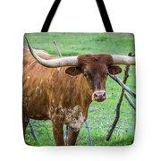 Longhorn#1 Tote Bag by Vincent Bonafede