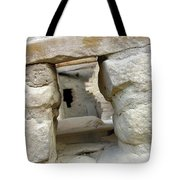 Looking Into The Past Tote Bag