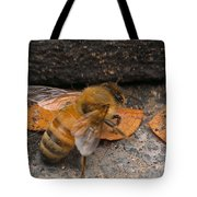 Lost In Direction Tote Bag