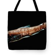 Luminous Lanternfish Tote Bag
