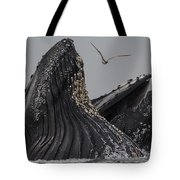 Lunge-feeding Humpback Whales In Monterey Bay Tote Bag