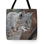 Lynx In A Crouch Ready To Pounce Tote Bag
