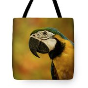 Macaw Portrait Tote Bag