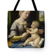 Madonna Of The Pinks Tote Bag