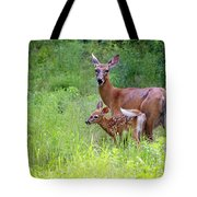 Maine White Tailed Deer Tote Bag