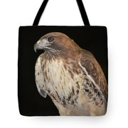 Majestic Hawk Tote Bag