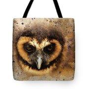 Malaysian Brown Wood Owl Tote Bag
