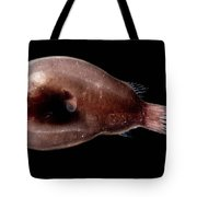 Male Anglerfish Tote Bag