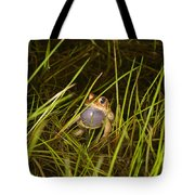 Male Toad Tote Bag