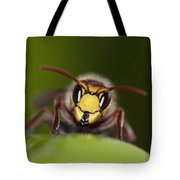 Mandibles Of Giant Hornet Tote Bag