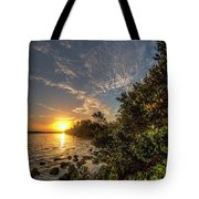Mangrove Sunrise Tote Bag