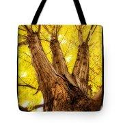 Maple Tree Portrait 2 Tote Bag