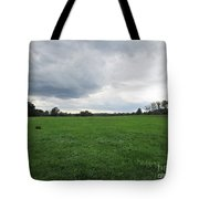 Meadow Near Coswig Tote Bag