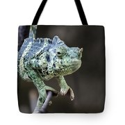 Mellers Chameleon Portrait Tote Bag