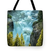 Mesa Falls - Yellowstone Tote Bag