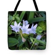 Mexican Clover Tote Bag