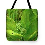 Milkweed Flower Buds  Tote Bag