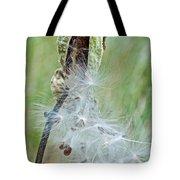 Milkweed Pod On Trail To North Beach Park In Ottawa County, Michigan Tote Bag