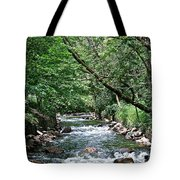 Minnehaha Creek Tote Bag