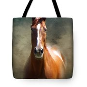 Misty In The Moonlight P D P Tote Bag