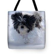 Misty Runs Through The Snow Tote Bag