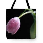 Misty Tote Bag by Tracy Hall