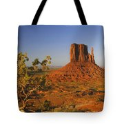 Mitten And Juniper Tote Bag by Winston Rockwell