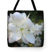 Mock Orange Blossoms Tote Bag