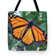 Monarch - Perfection Tote Bag