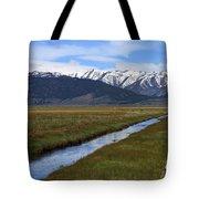 Mono County Nevada Tote Bag
