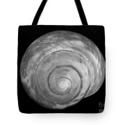 Moon Shell Tote Bag