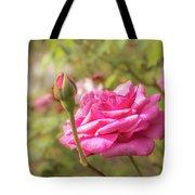 Moondrops 85 Hybrid Tea Rose, Pink Rose Originally Produced By  Tote Bag