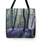Morning Bluebells Tote Bag