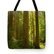 Morning In Devoto Tote Bag
