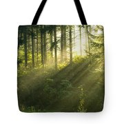 Morning Light Iv Tote Bag