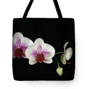 Moth Orchid 3 Tote Bag