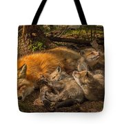 Mother Fox And Her Kits Tote Bag