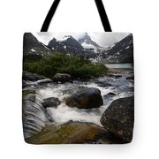 Mount Assiniboine Canada 17 Tote Bag