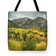 Mount Timpanogos Fall Colors Tote Bag