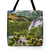 Mountain Lake In 5 Lakes Valley In Tatra Mountains, Poland. Tote Bag
