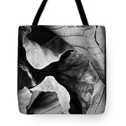 Mounts Botanical Garden 2363 Tote Bag