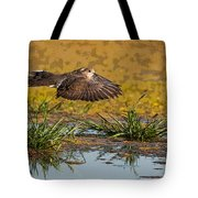 Mourning Dove In Flight Tote Bag