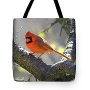 Mr Northern Cardinal Tote Bag