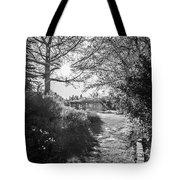 Msu Spring 14 Tote Bag
