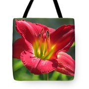 Scarlet Bloom Tote Bag
