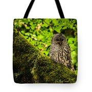 Muir Woods Owl Tote Bag