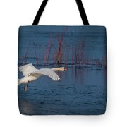 Mute Swan In Flight Tote Bag