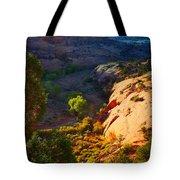 Mystic Utah Tote Bag