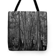 Narrow Path Tote Bag