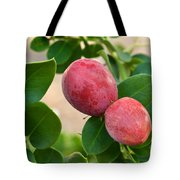 Natal Plums On Branch Tote Bag